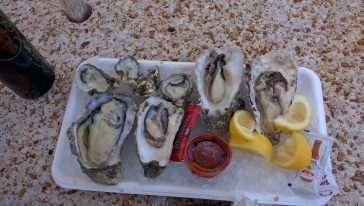 Om nom oysters